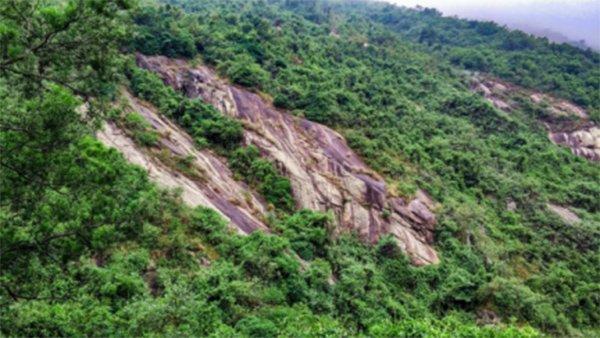 Senbetter-News | Enjoy endless fun at Guifeng National Forest Park-1